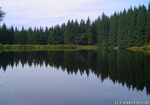 Der Haderbacher Teich
