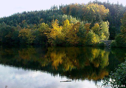Der Heilige Teich bei Gernrode im Harz