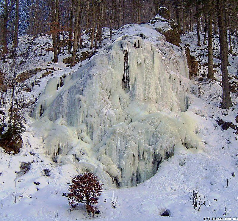 Winter im Harz - Der gefrorene Radau-Wasserfall
