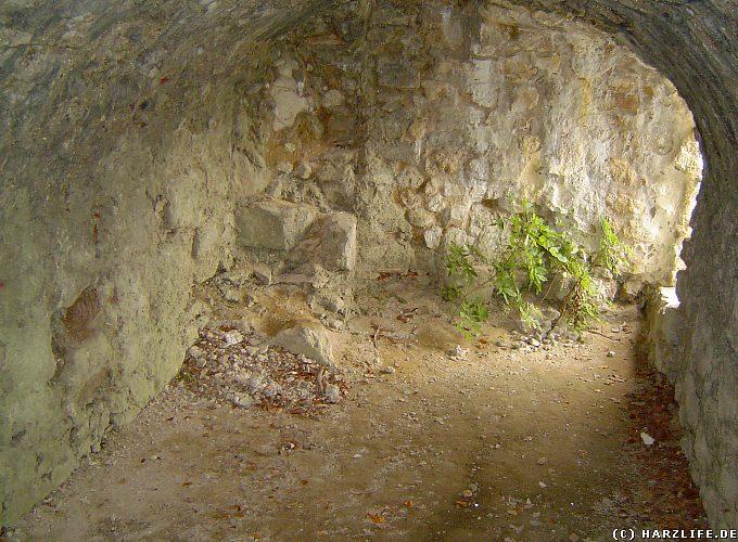 Felsenkammer in der Burgruine Scharzfels