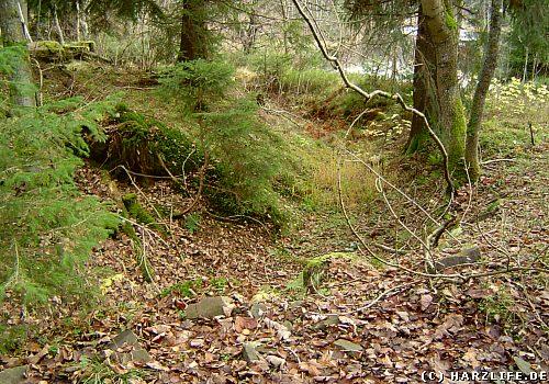 Reste des Stadtweger Grabens nahe des Unteren Kellerhalsteiches