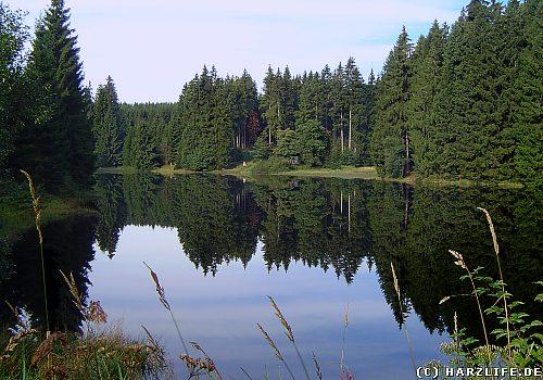 Der Untere Hahnebalzer Teich