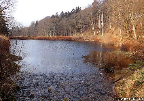 Der Hilfe-Gottes-Teich