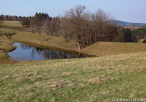Der Bärener Teich