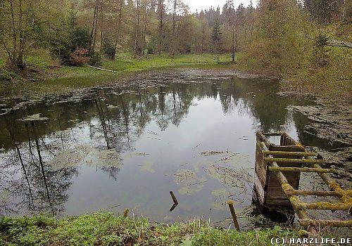 Der Untere Engelsburger Teich