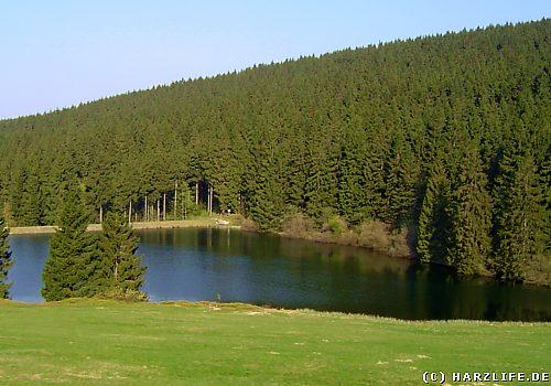 Der Auerhahner Teich bei Bockswiese im Harz