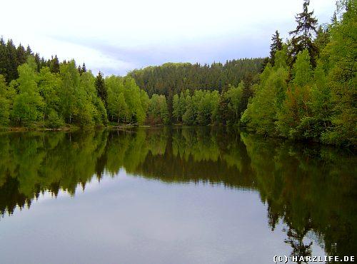 Der Elbingstalteich zwischen Güntersberge und Straßberg im Harz