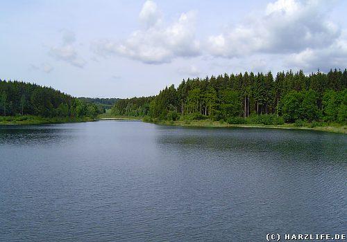 Der Frankenteich bei Straßberg im Harz