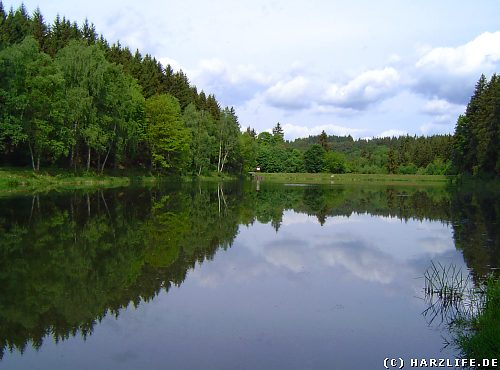 Der Fürstenteich bei Silberhütte im Harz