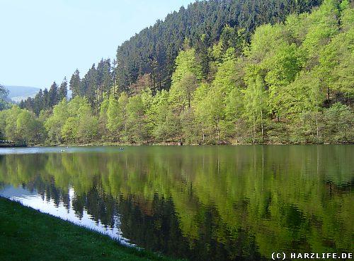Der Herzberger Teich