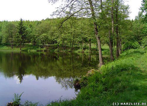 Der Maliniusteich bei Straßberg im Harz