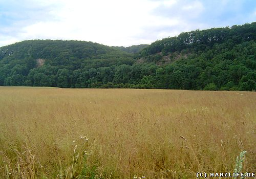 Der Alte Stolberg