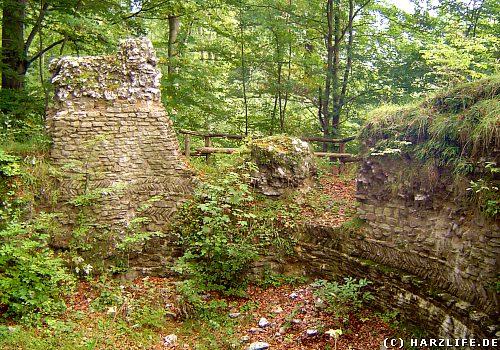 Die Burgruine Sachsenstein