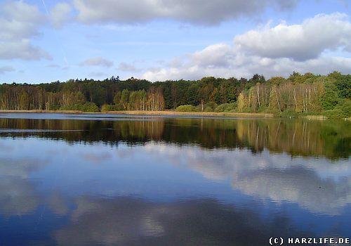Priorteich im Naturschutzgebiet