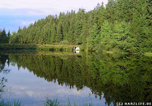 Der Obere Spiegelthaler Teich