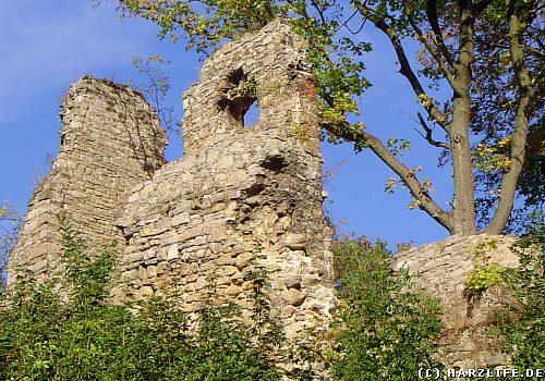Kennen selbst viele Harzer nicht: Die Ruine der Stecklenburg