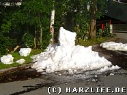 Schneeberg im Hochsommer
