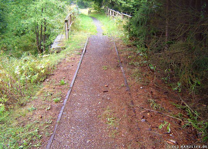 Das letzte Gleis der Südharzeisenbahn