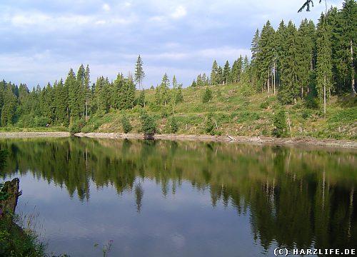 Der Untere Spiegelthaler Teich