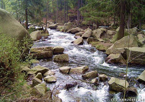 Die Oker im Harz